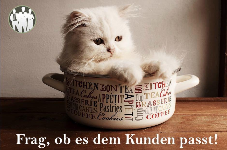 Katze im Korb als Beispiel für Verkaufsgespräch führen nachfragen, Frag, ob es dem Kunden passt.