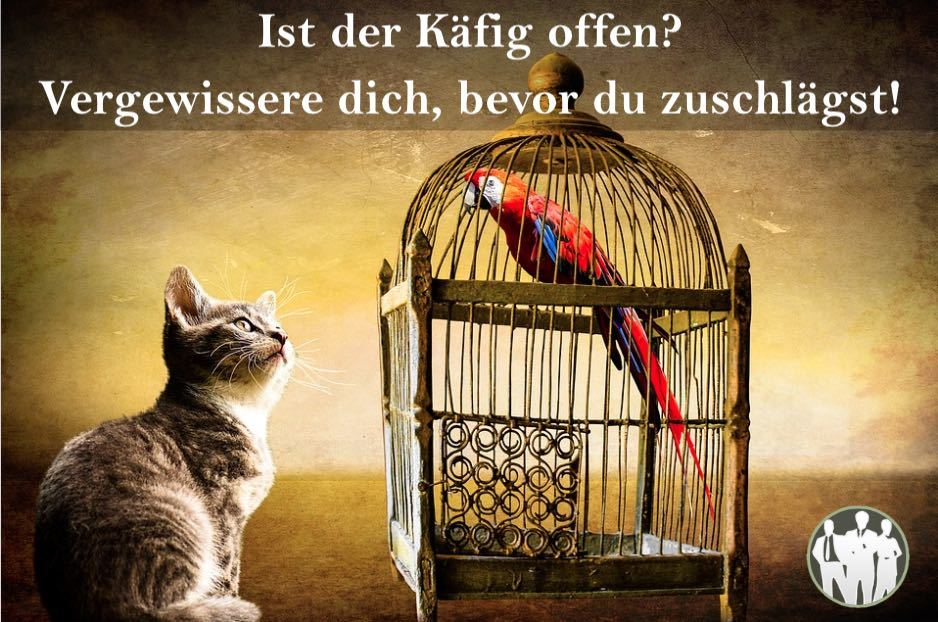 Katze und Papagei in Käfig als Beispiel für Verkaufsgespräch führen. Ist der Käfig offen? Vergewissere dich, bevor zu zuschlägst